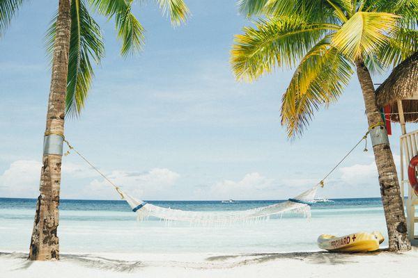 フィリピンの海の前で椰子の木にかけられたハンモックの写真