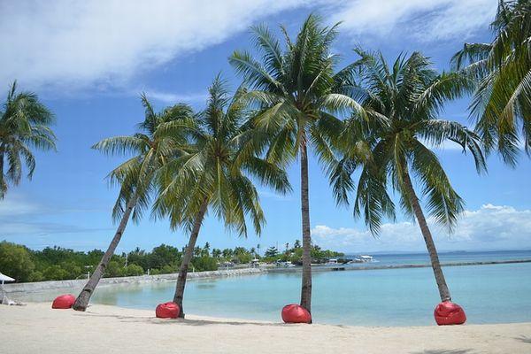 フィリピン セブ島の海