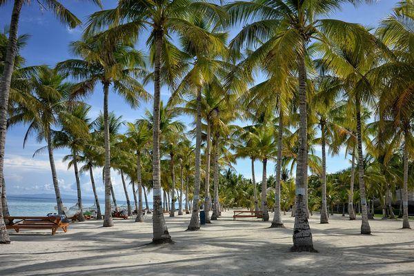 ボホール島のビーチ