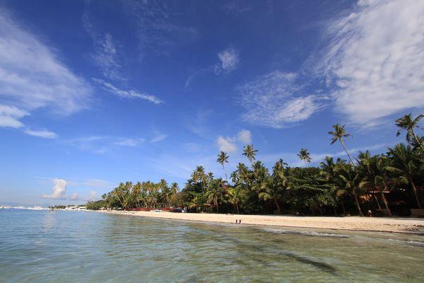 フィリピンのモアルボアルの海