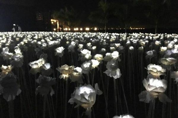 フィリピン セブ島の10,000 Roses Cafe & More