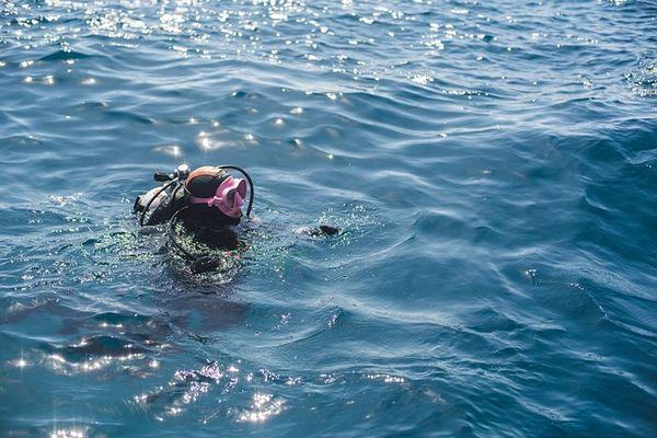 ダイビングを楽しむ人