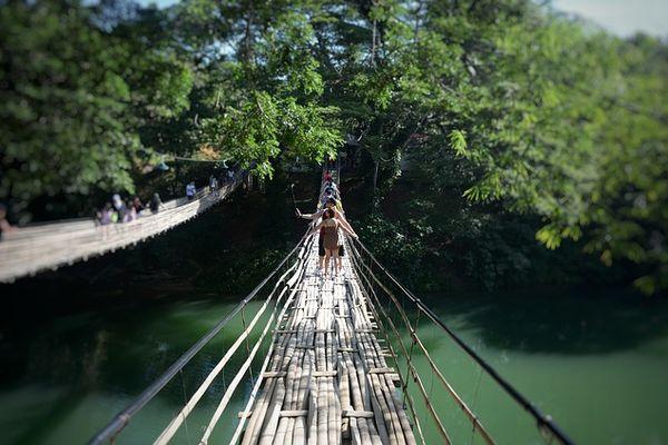 大自然の中の吊り橋